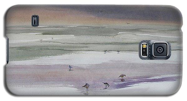 Shoreline Birds II Galaxy S5 Case