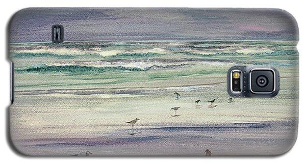 Shoreline Birds IIi Galaxy S5 Case