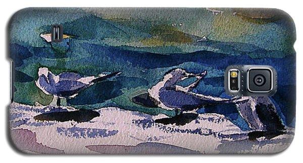 Shoreline Birds Iv Galaxy S5 Case