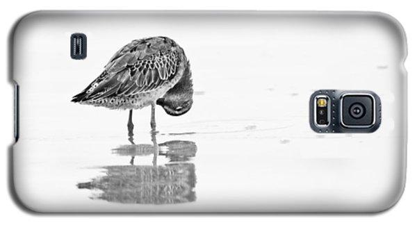 Short Billed Dowitcher Galaxy S5 Case