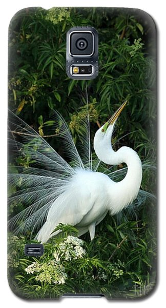 Showy Great White Egret Galaxy S5 Case