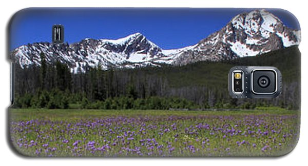 Showy Penstemon Wildflowers Sawtooth Mountains Galaxy S5 Case