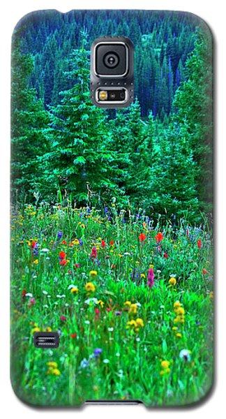 Shrine Pass Wildflowers Galaxy S5 Case