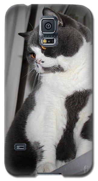 Shuli  Galaxy S5 Case