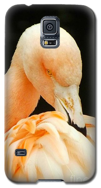 Galaxy S5 Case featuring the photograph Shy by Clare Bevan