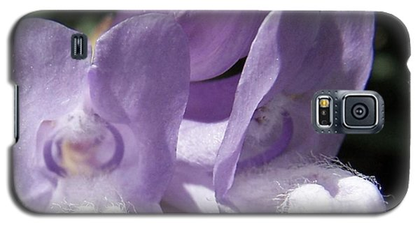 Shy Little Violets Galaxy S5 Case