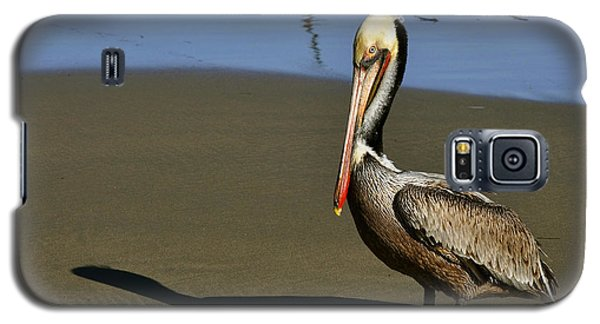 Galaxy S5 Case featuring the digital art Shy Pelican by Gandz Photography