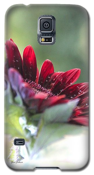 Galaxy S5 Case featuring the photograph Shy Sunflower by Yumi Johnson