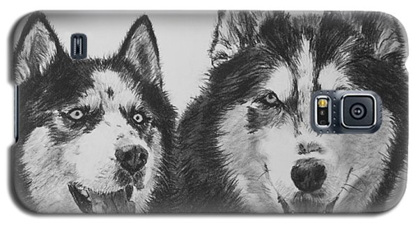 Siberian Husky Dogs Sketched In Charcoal Galaxy S5 Case