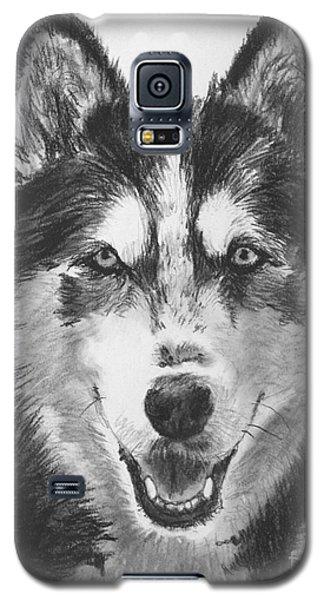 Siberian Husky Drawing Galaxy S5 Case