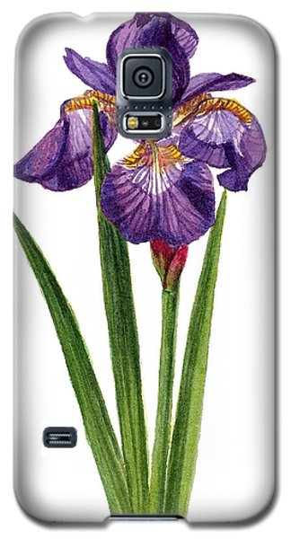 Siberian Iris II - Iris Sibirica Galaxy S5 Case