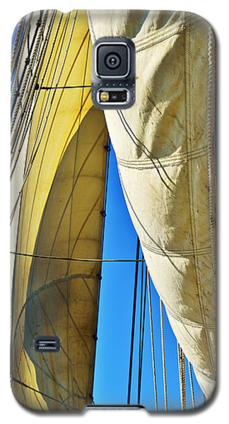 Sibling Sails Galaxy S5 Case