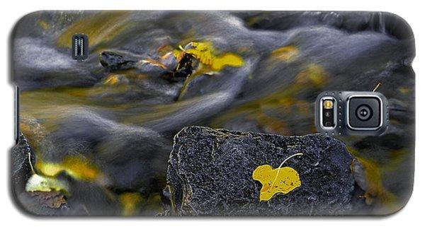 Sierra Stream Galaxy S5 Case