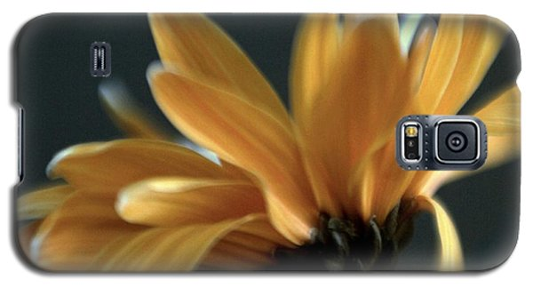 Galaxy S5 Case featuring the photograph Signature Daisy by Mary Lou Chmura