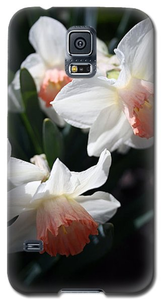 Galaxy S5 Case featuring the photograph Signs Of Spring by Kay Novy