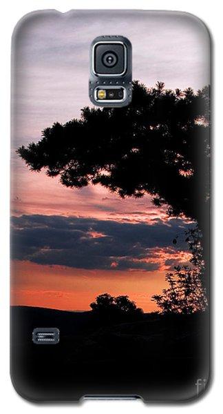 Silhouette Galaxy S5 Case