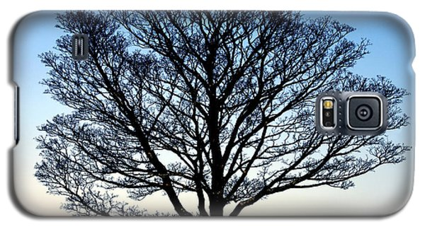 Silhouetted Tree Galaxy S5 Case by Craig B