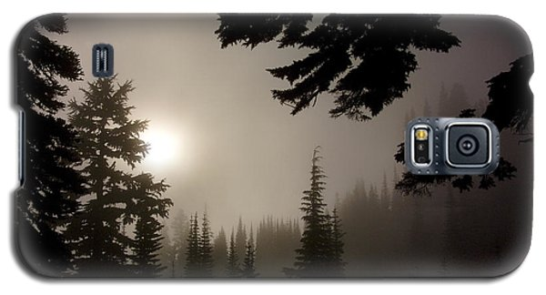 Silhouettes Of Trees On Mt Rainier Galaxy S5 Case