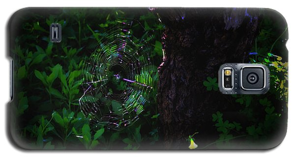 Silk Galaxy S5 Case by Cassandra Buckley