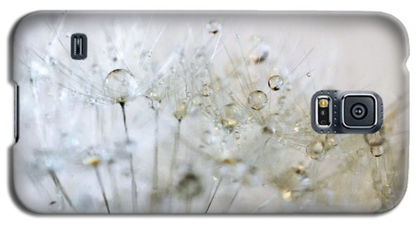 Galaxy S5 Case featuring the photograph Silver And Gold by Marianna Mills