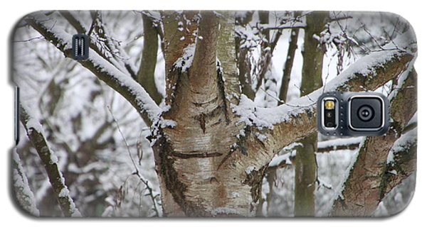 Galaxy S5 Case featuring the photograph Silver Birch by Elizabeth Lock