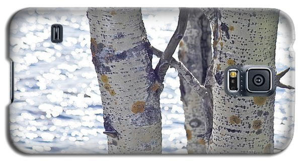 Silver Birch Trees At A Sunny Lake Galaxy S5 Case by Heiko Koehrer-Wagner