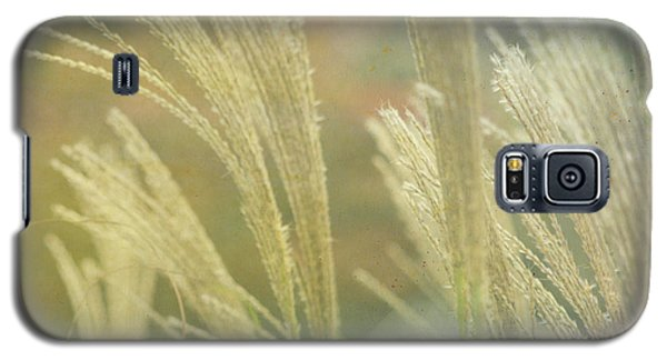 Silver Grass Galaxy S5 Case
