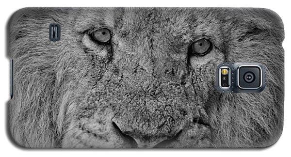 Silver Lion Galaxy S5 Case
