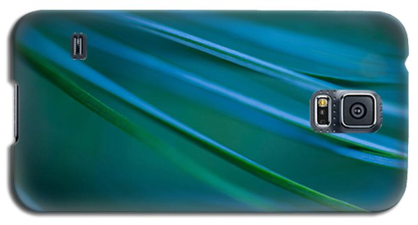 Galaxy S5 Case featuring the photograph Silver Pine by Jacqui Boonstra