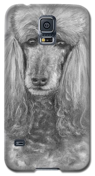 Silver Standard Poodle Drawing Galaxy S5 Case