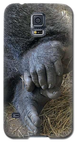 Galaxy S5 Case featuring the photograph Silverback Toes by Robert Meanor