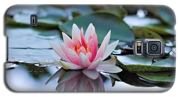 Silvery Galaxy S5 Case
