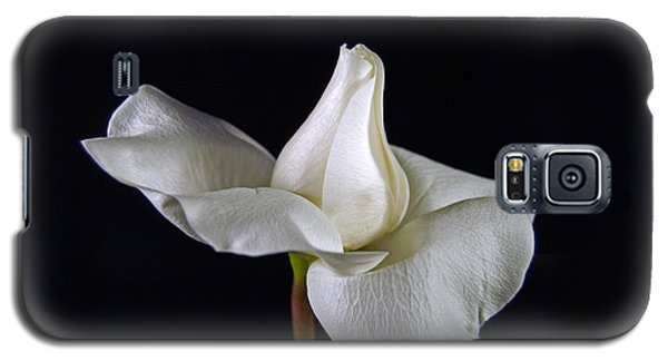 Galaxy S5 Case featuring the photograph Simple In White by Elsa Marie Santoro