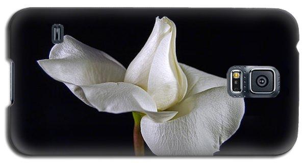 Simple In White Galaxy S5 Case by Elsa Marie Santoro