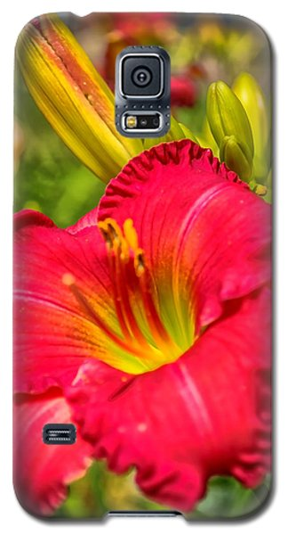 Simple Lily Galaxy S5 Case