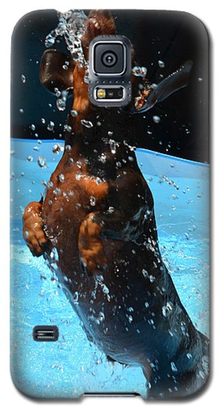 Simple Pleasures Of Romeo The Water Dog Galaxy S5 Case