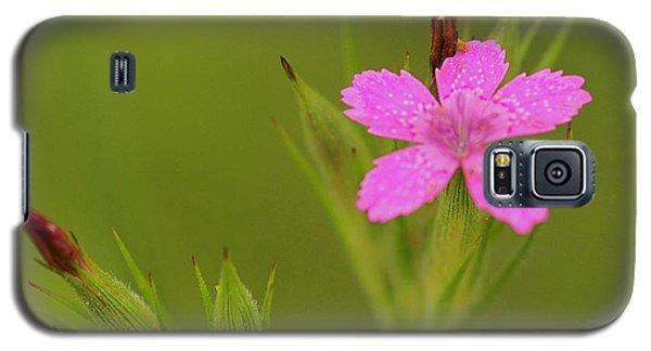 Simple Quiet Beauty  Galaxy S5 Case