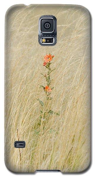 Simple Splash Of Color Galaxy S5 Case