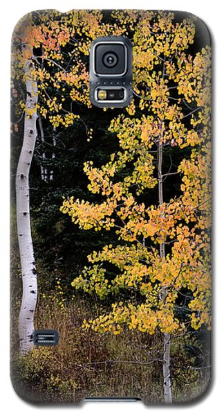 Galaxy S5 Case featuring the photograph Simple by The Forests Edge Photography - Diane Sandoval