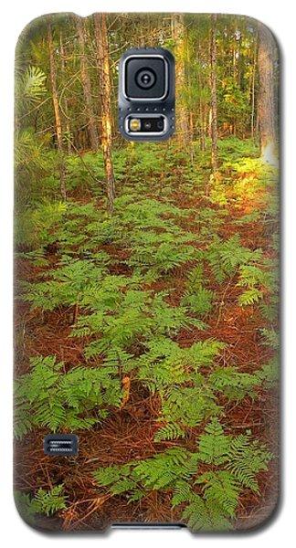 Fern Favorite Galaxy S5 Case