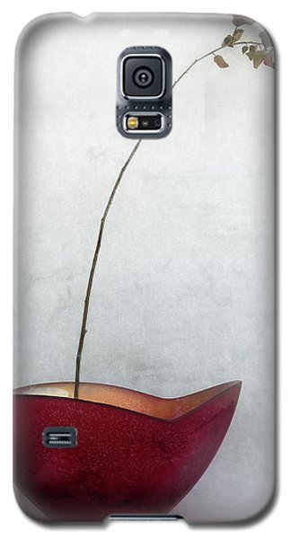 Branch Galaxy S5 Case - Simplified by Jeffrey Hummel