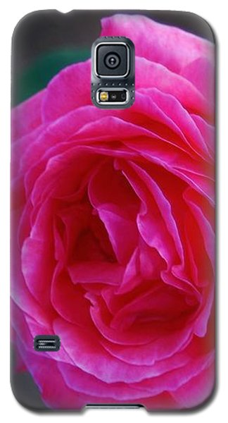 Simply A Rose Galaxy S5 Case