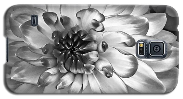 Simply Beautiful Galaxy S5 Case