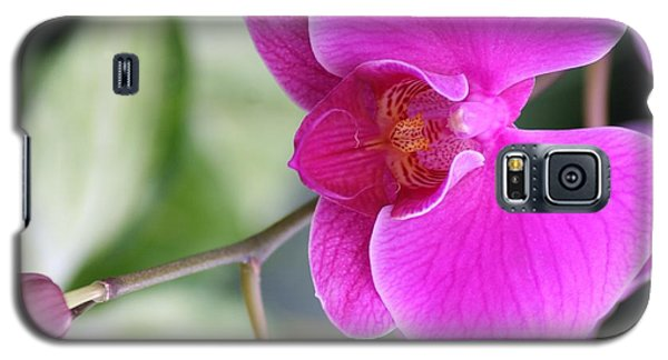 Galaxy S5 Case featuring the photograph Simply Delicate Pink Orchid by Mary Lou Chmura