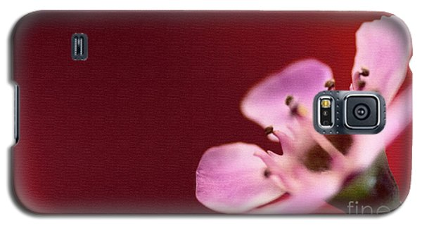 Simply Pretty Galaxy S5 Case