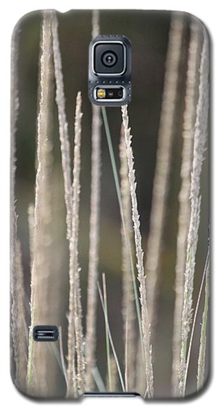 Galaxy S5 Case featuring the photograph Simply Pure by Amy Gallagher