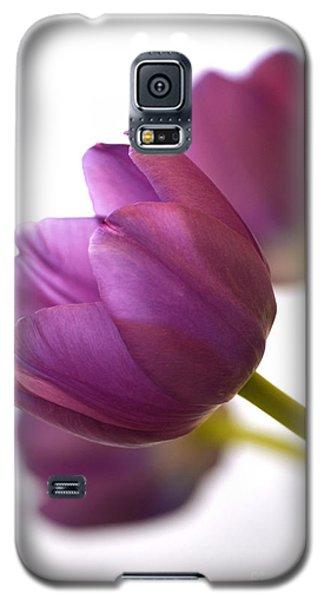 Simply Purple Galaxy S5 Case