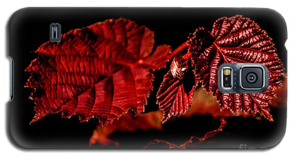 Simply Red Galaxy S5 Case