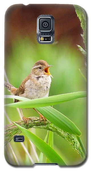 Galaxy S5 Case featuring the photograph Singing For A Companion by I'ina Van Lawick