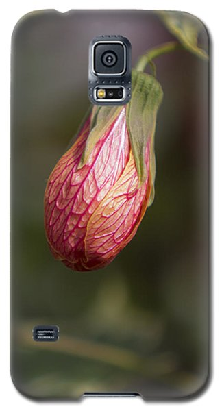 Single Bud Galaxy S5 Case